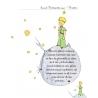 Micul prinţ  pentru copii- Prietenia